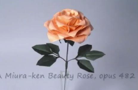 Роза из бумаги. Видео схема.  Из Бумаги - Mozilla Firefox