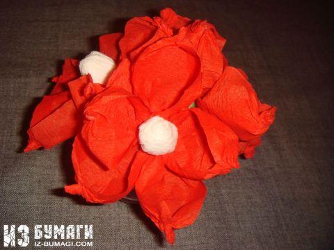 legkie-krasnie-cvetochki