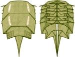 mechehvost-origami-shema