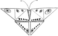 origami-babochka-shema