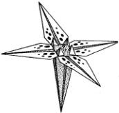 origami-iris-shema