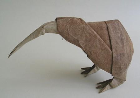 ptica-kivi