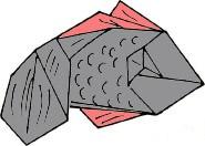 riba-iz-bumagi