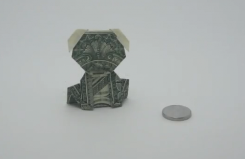 shenok-iz-dollara