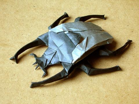 Жук-Голиаф(схема)