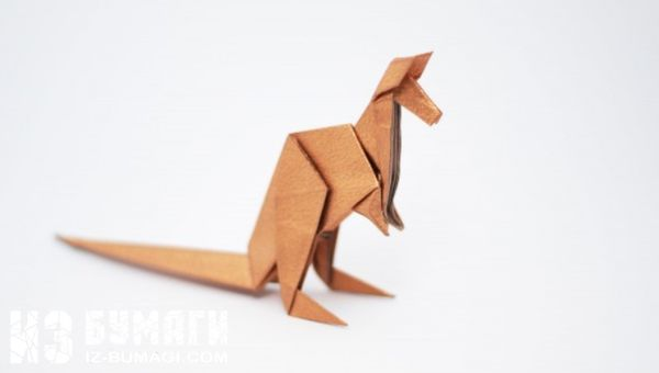 shema-origami-kenguru